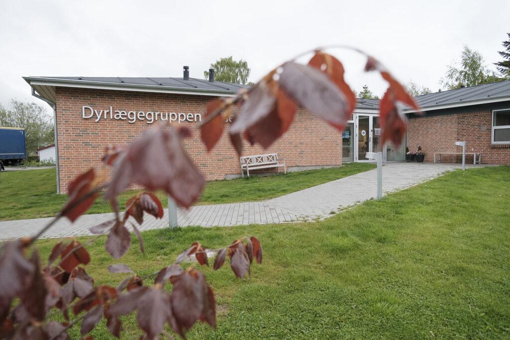 Din lokale dyrlæge i Hinnerup og Hammel | Dyrlægegruppen Dania